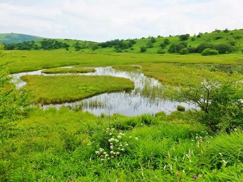 12・八島ヶ池と八島湿原