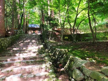 30・百済寺城の石垣遺構