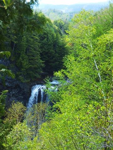 新緑の中、善五郎の滝