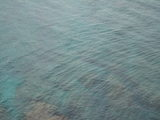 エメラルドの海面