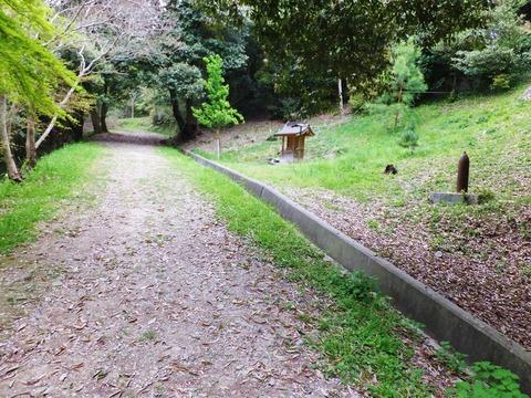 整備された登山道入口