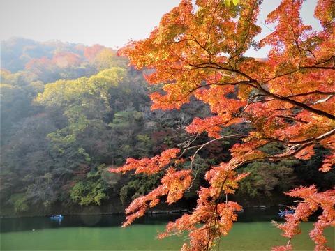保津川と嵐山ともみじ