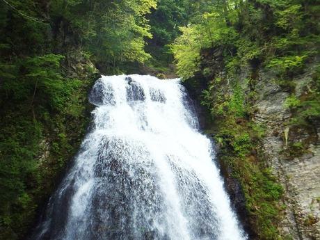 滝口を見上げる