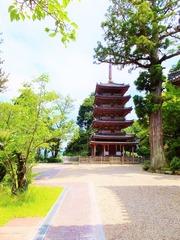 14・本堂前から海住山寺の五重塔