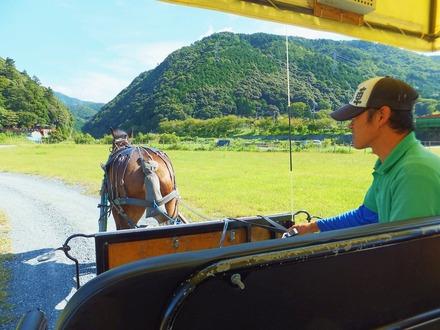 馬を操りながら道中の案内をしてくれます