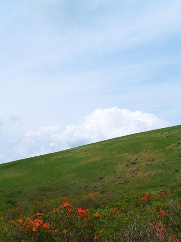 レンゲツツジと丘陵と空
