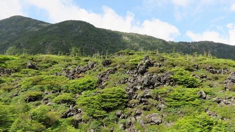 13・坪庭に広がる溶岩台地