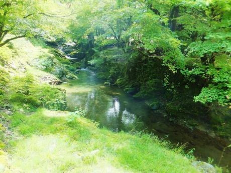 峰定寺内を流れる清流・寺谷川
