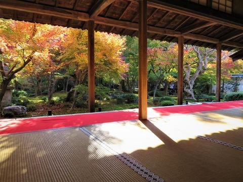 圓光寺 額縁庭園ブログ2