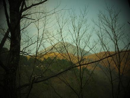 芽吹きと蓼科山