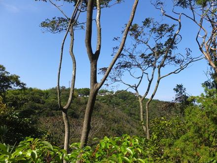 9・9号不への稜線の道から摺鉢谷を挟んで向こうの峰を見る