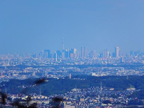 28・新宿のビル群の向こうにスカイツリーが見えた