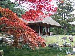 秋の松琴亭
