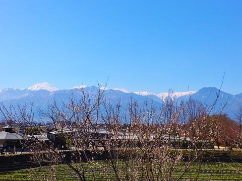 1・早春の常念岳と有明山