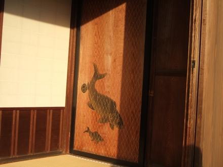 杉戸の雌鯉