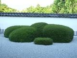 正伝寺 小堀遠州作の庭