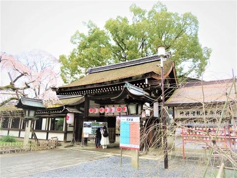 �桜の神紋を吊るす東神門