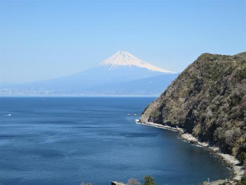 煌めきの丘から見る富士山