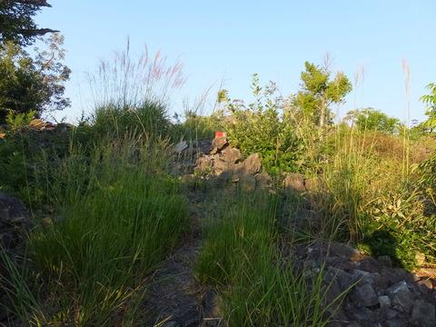 65・北大塚西古墳の前方部の赤標柱か
