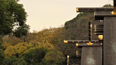 1 熱田神宮本宮と黄葉