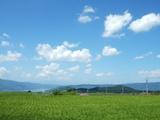 農場近くの田園風景