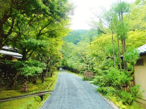 離れ前から峰定寺の正門を