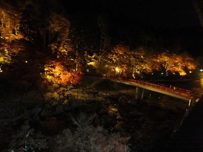 部屋からライトアップされた紅葉と待月橋