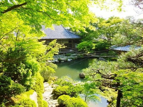 26・喜見院・池泉回遊式庭園と本坊(書院)