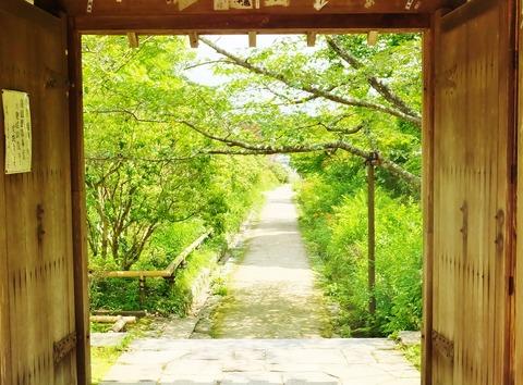 15・山門から夏の参道を