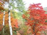 横谷観音の紅葉