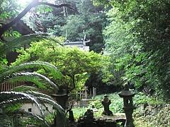 本殿を背景にひっそり立つ雷大臣命の墓