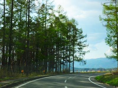 八ヶ岳エコーライン