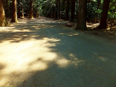 光と影で神の意匠が描かれた参道