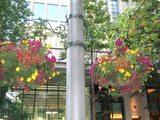 街灯のブーケ