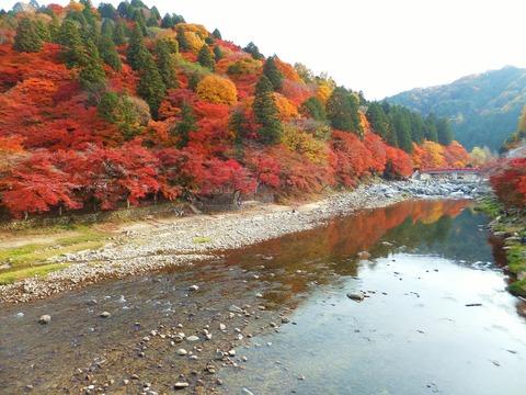 山も川も紅葉
