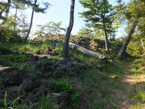 44・手前(南)から中央円墳を見る