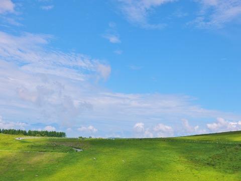 1・2014年8月2日霧ケ峰高原