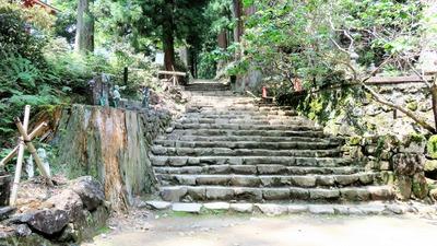 19・奥の院登り口・左はℍ10に倒れた樹齢600年の杉の切り株