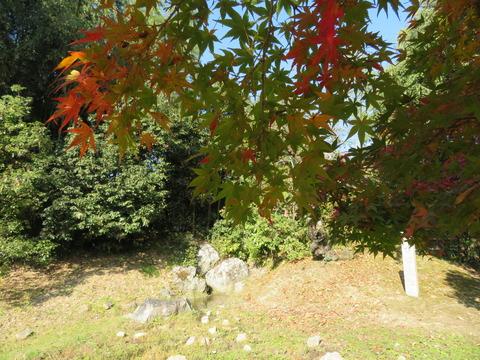 色づきはじめた紅葉のむこうに名古曽の滝