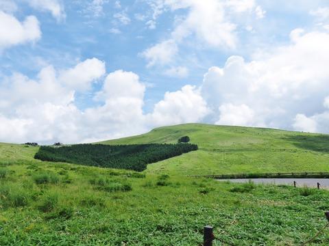 4・霧ケ峰高原の夏