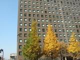 新銀行東京の入るビル