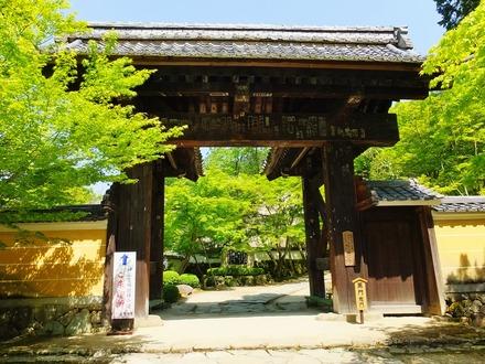 10・金剛輪寺・黒門