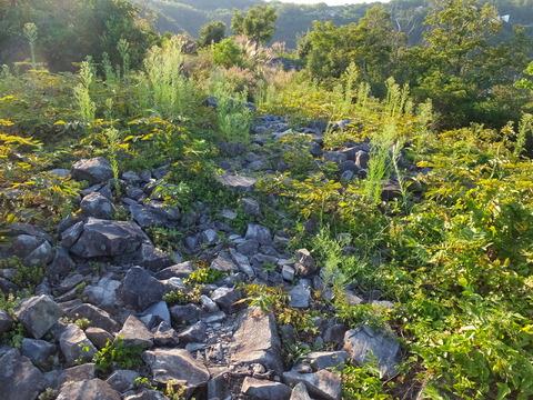 62・後円墳頂上の積石、遠くに西古墳の積石群