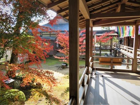 村雨の廊下から紅葉もチラホラ