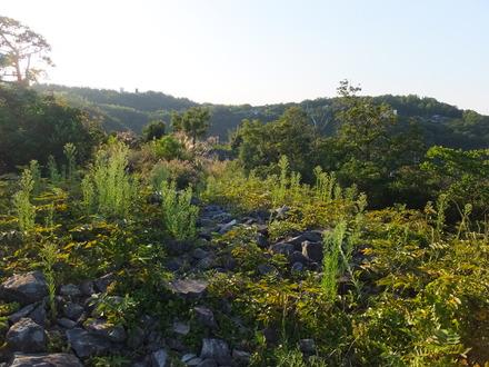 64・北大塚古墳から石清尾山9号墳と谷越しに見合う