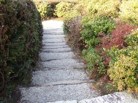 隣雲亭への階段混ぜ垣