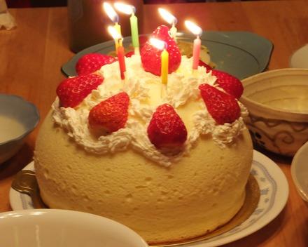 11・ズコットチーズケーキに苺と生クリームでデコレーション