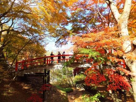 河鹿橋で紅葉を愉しむ観光客