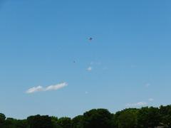 みんなの原っぱでは凧揚げ