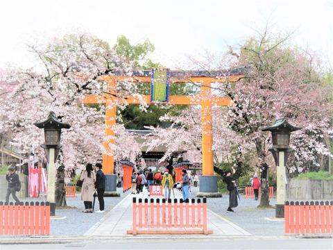 �平野神社・鳥居